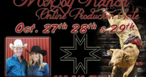 McCoy Ranch Production Sale 2015